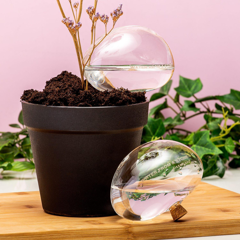 Bewateringsstenen Van Glas (Set Van 2)