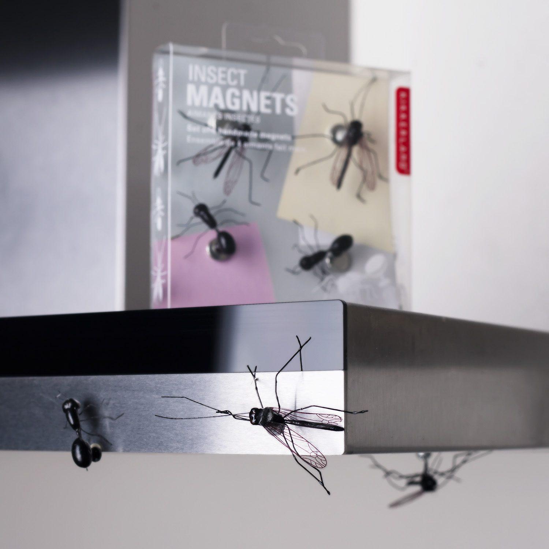Insect Magneten (Set Van 4) - Kikkerland