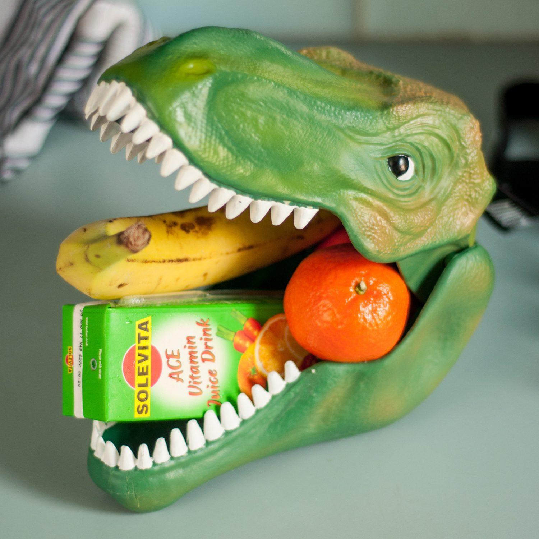 Dinosaurus Lunchtrommel