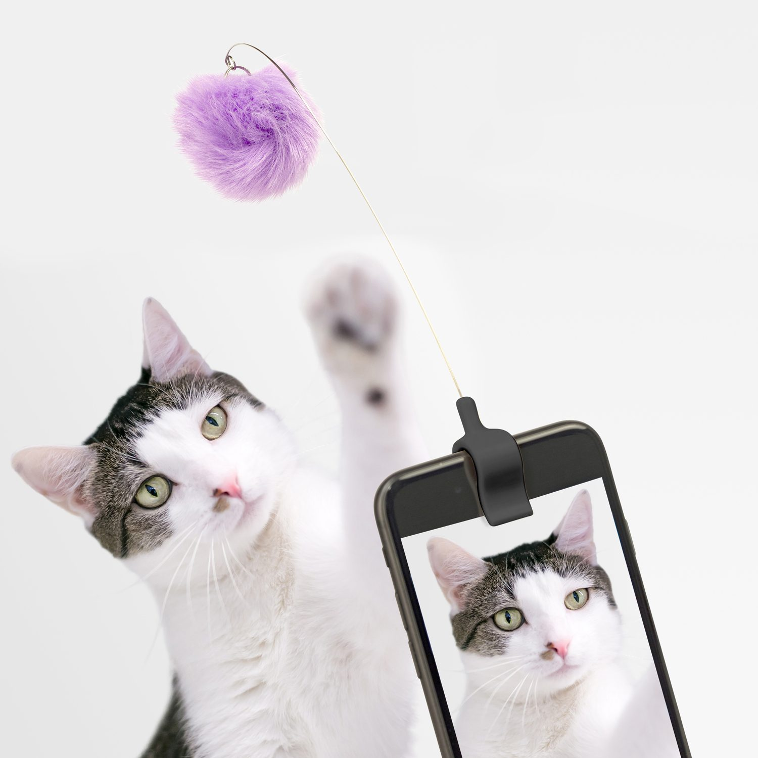 Kitty Phone Clip - Kikkerland