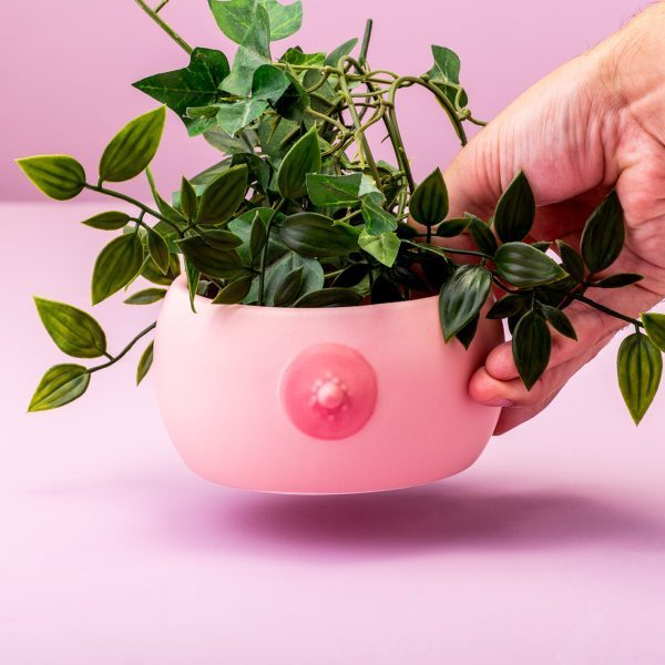 the-boob-bowl-1